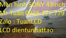 Thay Màn hình TIVI SONY 43W800