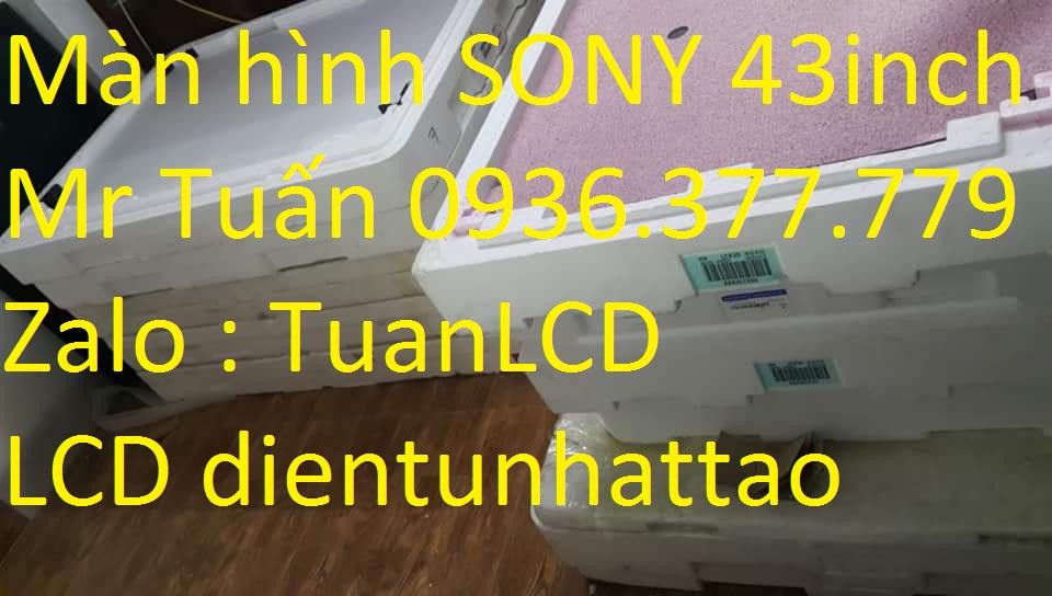 màn hình tivi 43 inch SONY